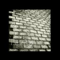 laura_bruen_nyc_batteryparkcobblestone