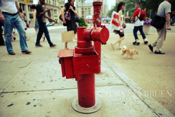 NYC Hydrant